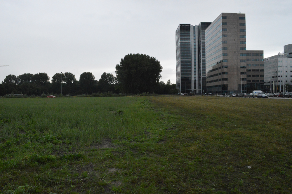 Disappearance of the western hillside and discovery of a new green field to the west