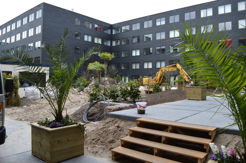 A tropical garden in the making in the courtyard of the Student Experience building
